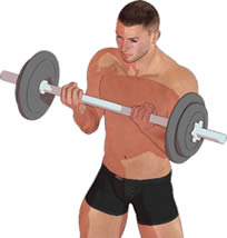 筋力トレーニング種目 | 超図説...
